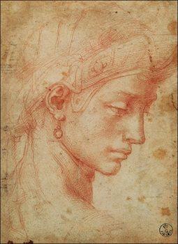 Michelangelo - Testa Festmény reprodukció