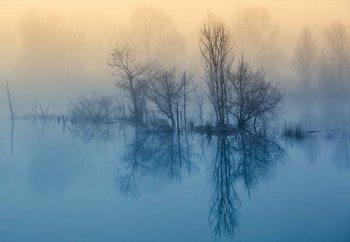 Ταπετσαρία τοιχογραφία  Morning Reflection