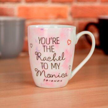 Friends - Rachel to my Monica muggar