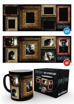 Harry Potter - Portraits muggar