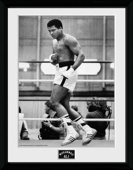 Muhammad Ali – Training 30x40cm Collector Print üveg keretes plakát