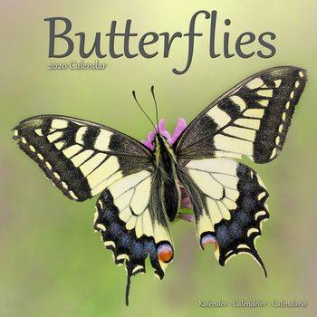 Butterflies naptár 2020