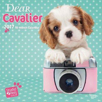 Dear Cavalier naptár 2017