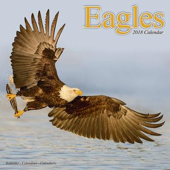 Eagles naptár 2020