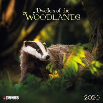 Forest Creatures naptár 2020