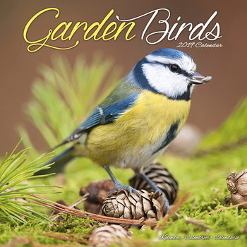 Garden Birds naptár 2020