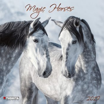 Magic Horses naptár 2019