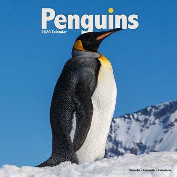 Penguins naptár 2020