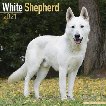 White Shepherd naptár 2021