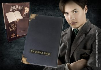 Harry Potter - Tom Riddle Diary Notes
