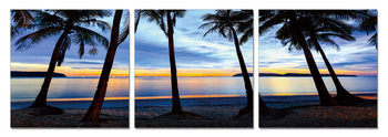 Silhouettes of palm trees on the beach Obraz