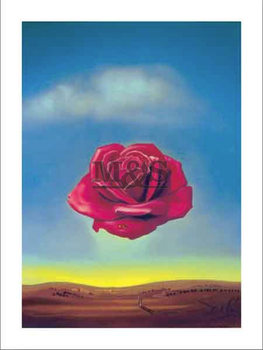 Medative rose, Obrazová reprodukcia
