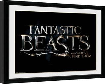 Zarámovaný plagát Fantastic Beasts - Logo