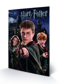 Obraz na dreve Harry Potter – Harry, Ron, Hermione