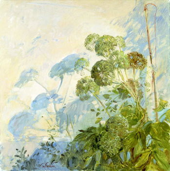 Obraz na plátně Angelica Shadows