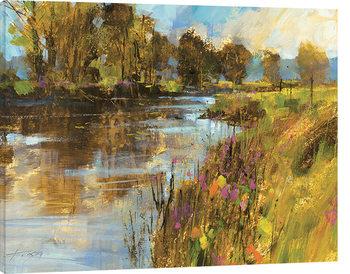 Obraz na plátně Chris Forsey - Spring River