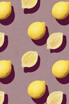 Obraz na plátně Fruit 19