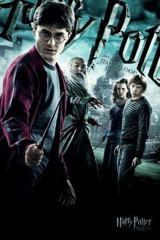 Obraz na plátně Harry Potter - Princ dvojí krve