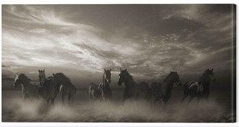 Obraz na plátně Malcolm Sanders - Wild Stampede