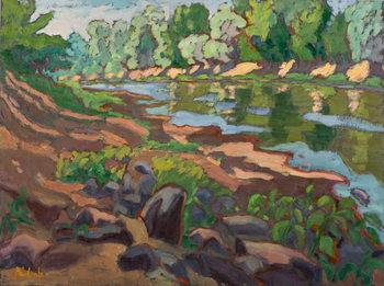 Obraz na plátně On the Shady Side of River Koros  oil on board