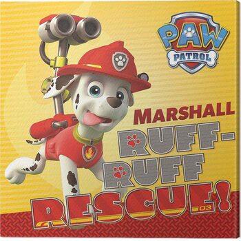 Obraz na plátně Paw Patrol - Marshall