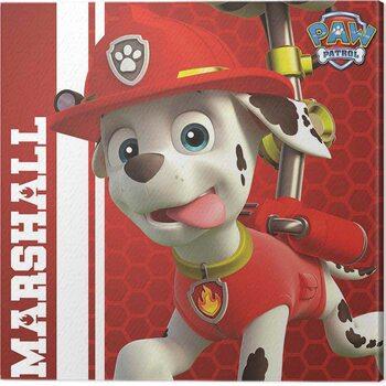 Obraz na plátně Paw Patrol - Marshall Ready to Rescue