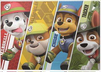 Obraz na plátně Paw Patrol - Split Characters
