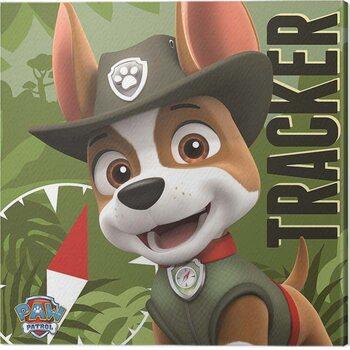 Obraz na plátně Paw Patrol - Tracker