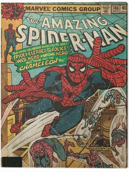 Obraz na plátně Spider-Man - Chameleon