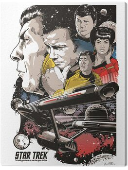 Obraz na plátně Star Trek - Boldly Go - 50th Anniversary