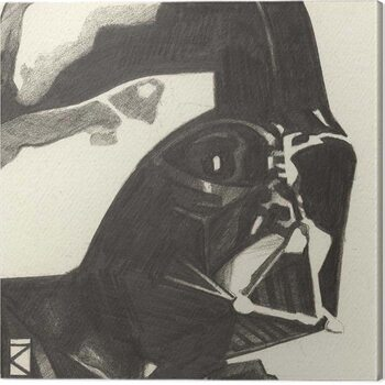 Obraz na plátně Star Wars - Darth Vader