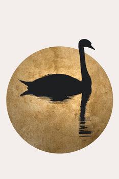 Obraz na plátně The Swan