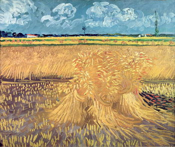 Obraz na plátně Wheatfield with Sheaves, 1888