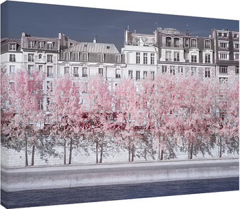 Obraz na plátně  David Clapp - River Seine Infrared, Paris
