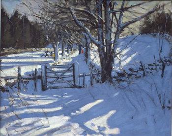Obraz na plátně Gate near Youlgreave, Derbyshire