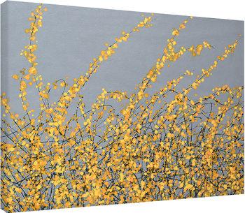 Obraz na plátně  Simon Fairless - Yellow Blossom