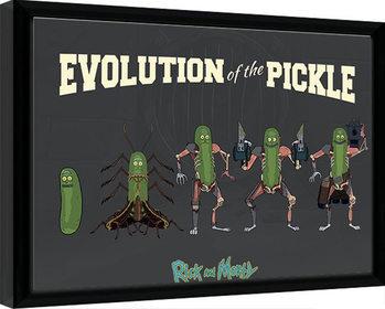 Zarámovaný plagát Rick & Morty - Evolution Of The Pickle