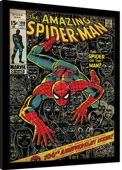 Zarámovaný plagát Spider-Man - 100th Anniversary