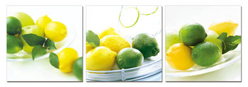 Obraz  Citrony a limetky