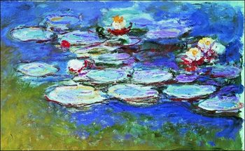 Obrazová reprodukce  Claude Monet - Gli Agapanti