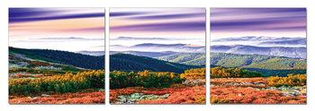 Obraz Colorful landscape