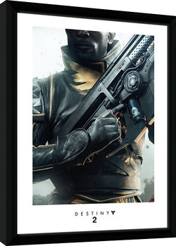 Destiny 2 - Warlock Zarámovaný plagát