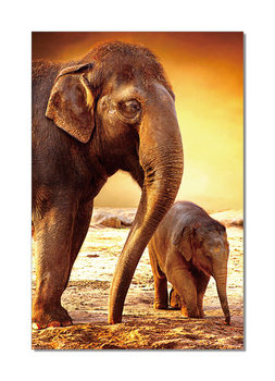 Obraz Elephants - Mom and Baby