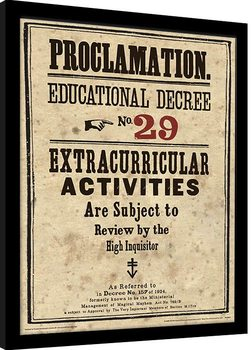 Harry Potter - Educational Decree No. 29 Zarámovaný plagát