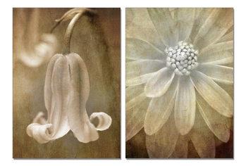 Obraz Květinová malba
