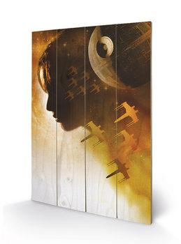 Obraz na drewnie Lotr 1. Gwiezdne wojny: historie - Jyn Silhouette