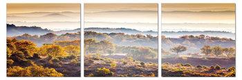 Obraz Mlha nad horami