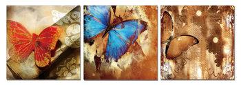 Obraz Motýl - umění přírody