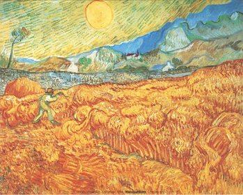 Obrazová reprodukce Obilné pole a žnec (sklizeň), 1889