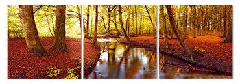 Obraz Podzimní romance v parku
